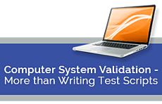 Computer System Validation - More than Writing Test Scripts